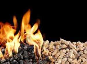 топливных гранул